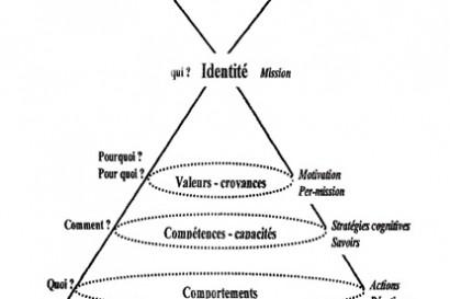 niveaux-logiques-dilts